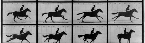 Muybridge brengt beweging in beeld